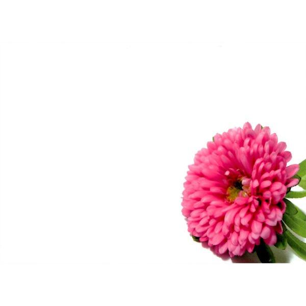 Large Plain Cards - Pink Flower 1