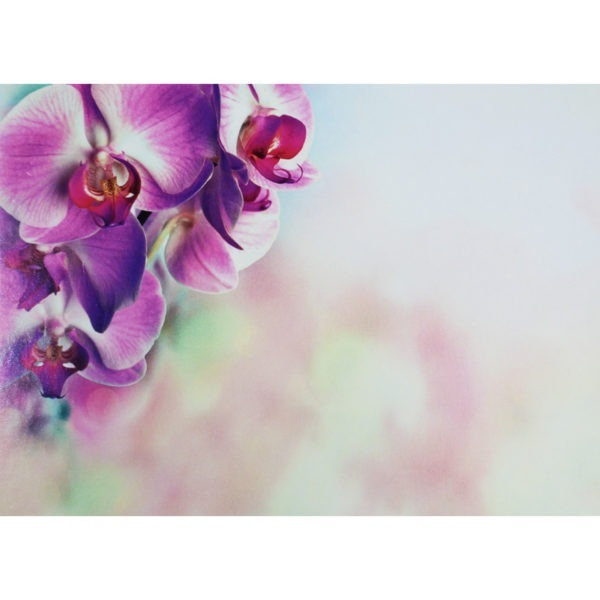 Large Plain Cards - Pink Orchid 1
