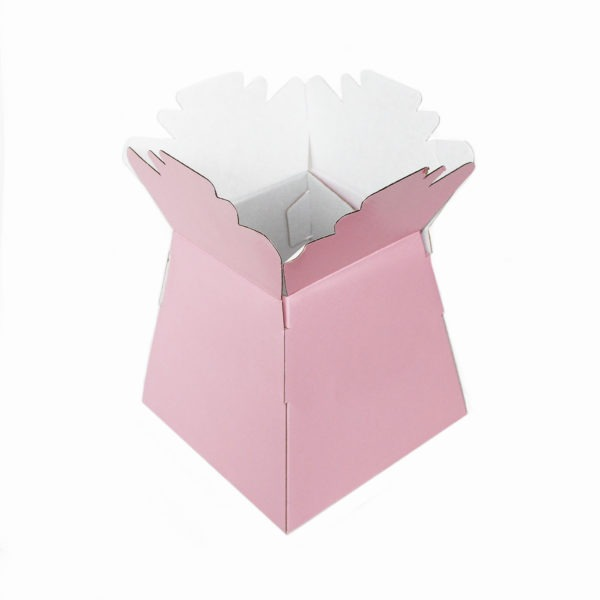 Living Vases - Baby Pink 1