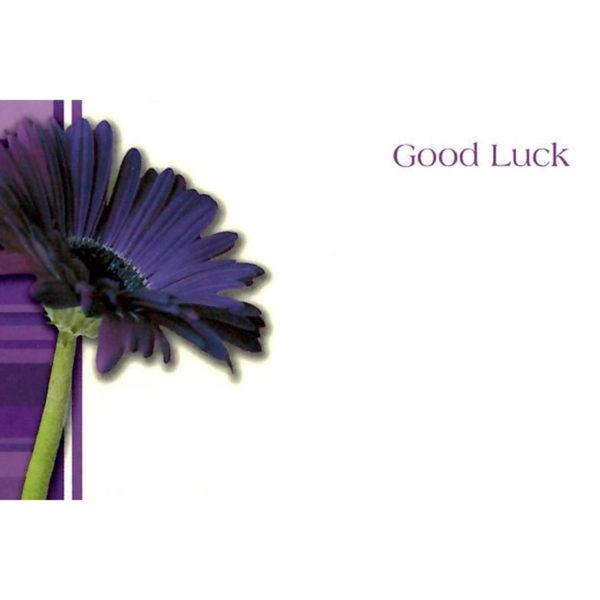 Small Cards - Good Luck - Purple Gerbera 1