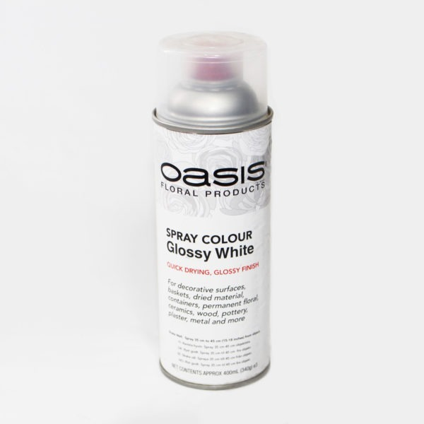 Oasis Spray Colour - Glossy White 1
