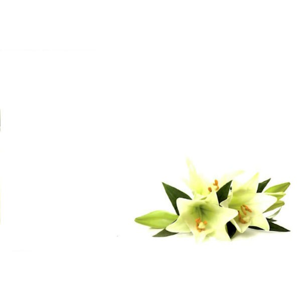 Small Plain Cards - Lilies 1