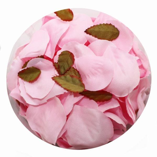 Rose Petals - Blush Pink 1