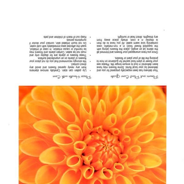 Folding Flower and Plant Care Card - Orange Dahlia 1
