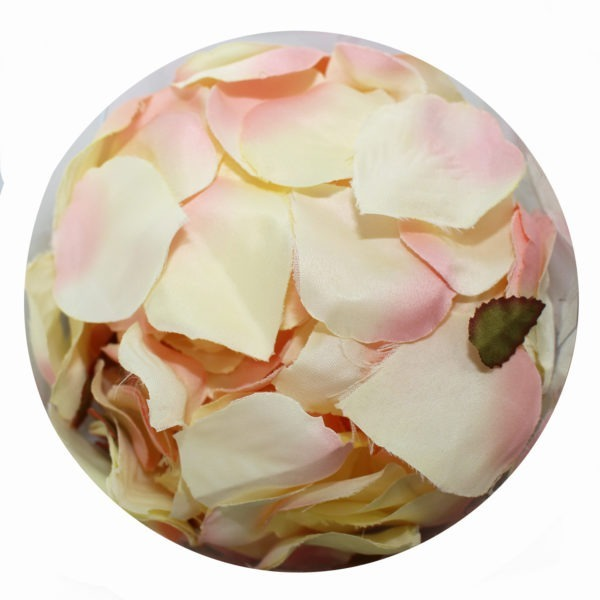 Rose Petals - Peaches and Cream 1
