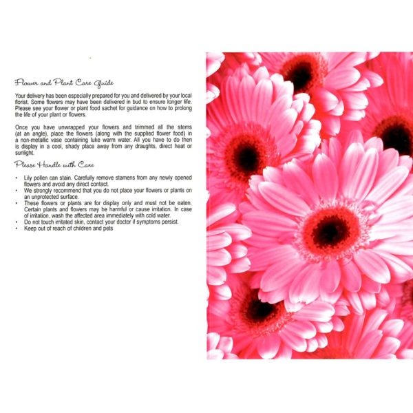 Folding Flower and Plant Care Card - Bright Pink Gerbera 1