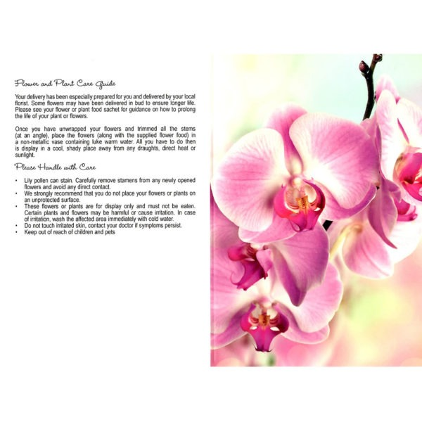 Folding Flower and Plant Care Card - Pink Orchid 1