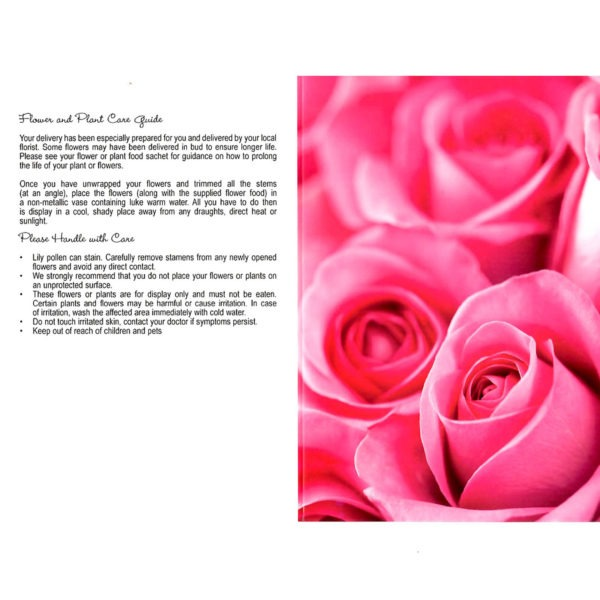 Folding Flower and Plant Care Card - Pink Roses 1