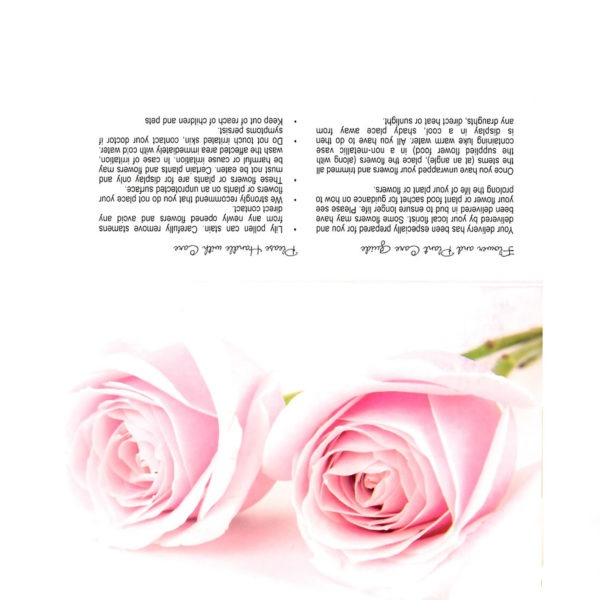 Folding Flower and Plant Care Card - Pink Roses, Pink Background 1