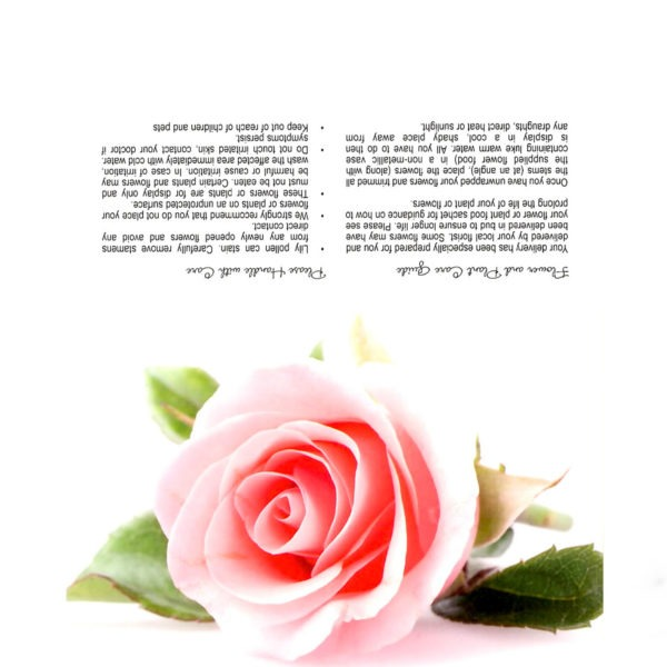 Folding Flower and Plant Care Card - Single Pink Rose 1