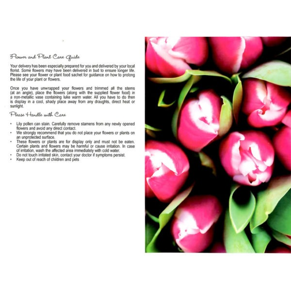 Folding Flower and Plant Care Card - Two Tone Pink Tulips 1