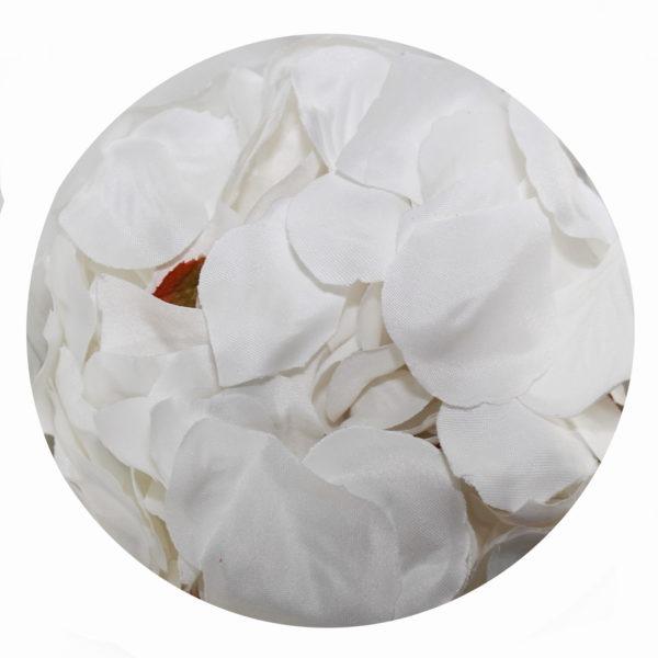 Rose Petals - White 1