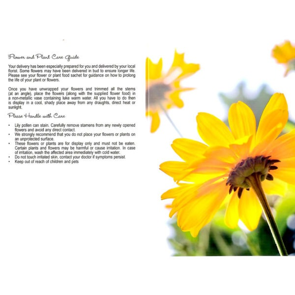 Folding Flower and Plant Care Card - Yellow Flower 1