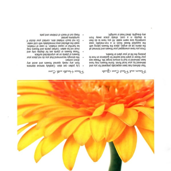 Folding Flower and Plant Care Card - Golden Yellow Gerbera 1