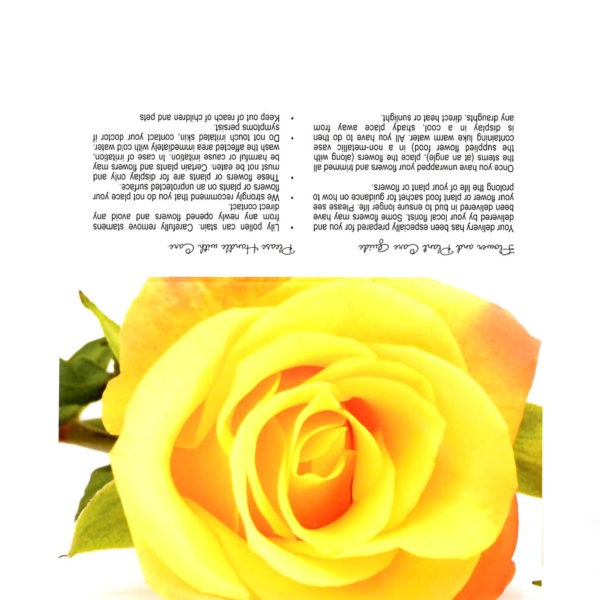 Folding Flower and Plant Care Card - Yellow Rose 1