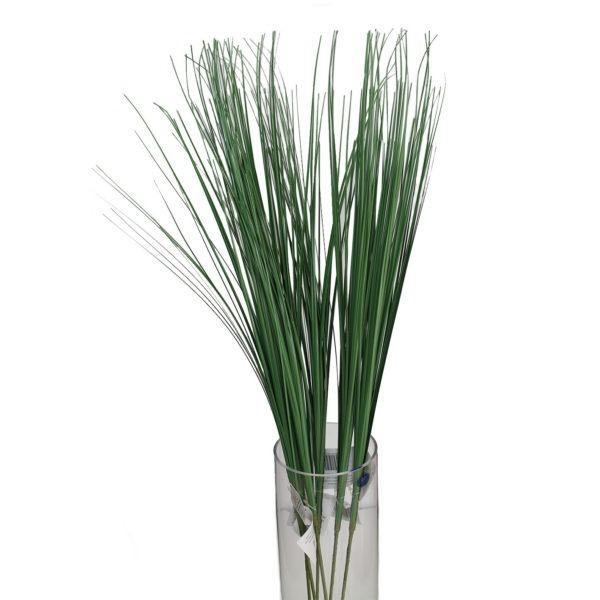 Reed Grass 1