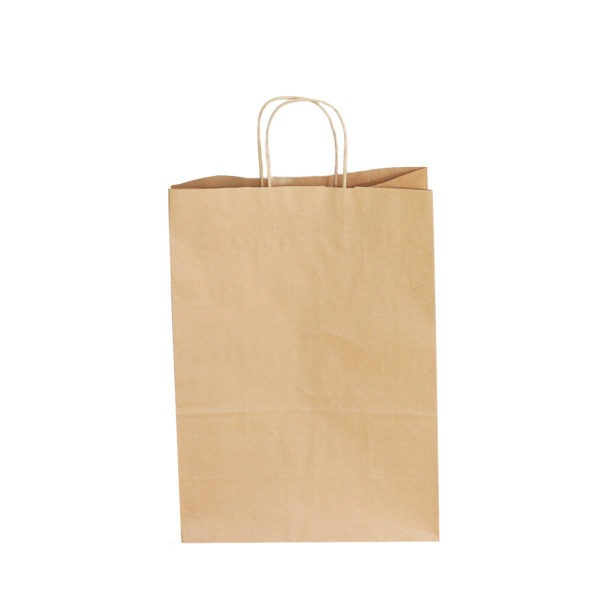 Kraft Carrier Bag 1
