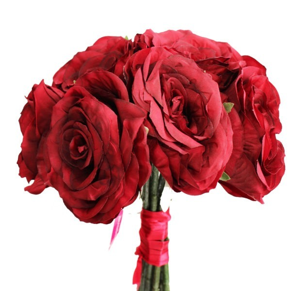 9 Red Roses 1
